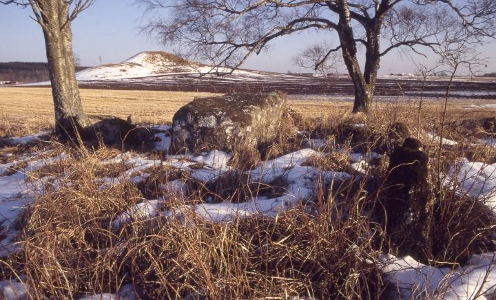 Gånggrift_(RAÄ-nr_Gökhem_19-1)_+_Holöja_storhög_(RAÄ-nr_Gökhem_21-1)_189-29.jpg